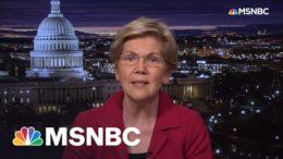 Sen. Warren: Jeff Bezos Superyacht Gives 'New Round Of Ammunition' For Wealth Tax | All In | MSNBC 3