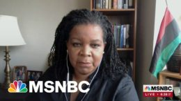 Author Annette Gordon-Reed Traces History Of Texas Through Family Story | Morning Joe 8