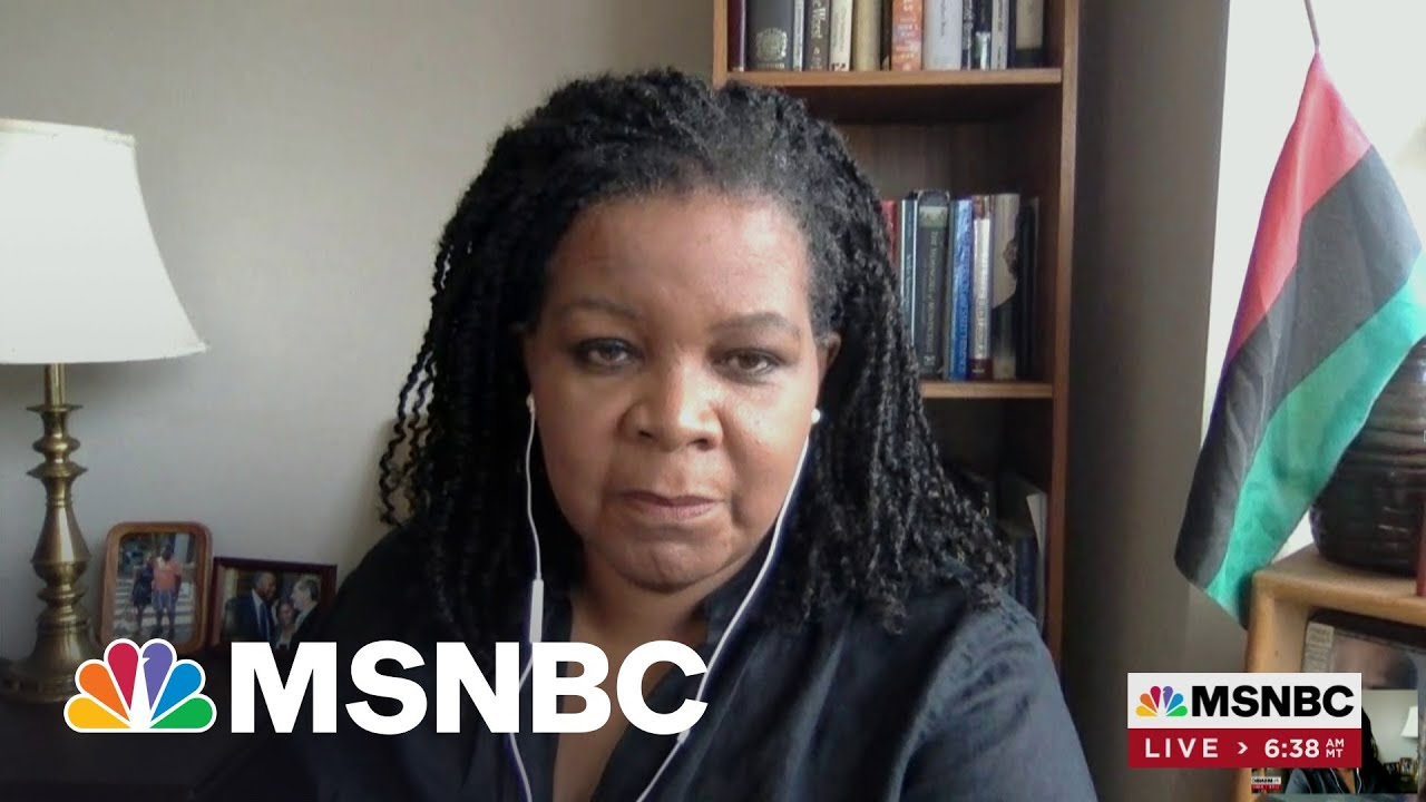 Author Annette Gordon-Reed Traces History Of Texas Through Family Story | Morning Joe 1