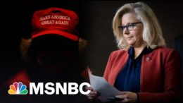 GOP Backs Trump Who Tried To Steal An Election Over Cheney | MSNBC 7