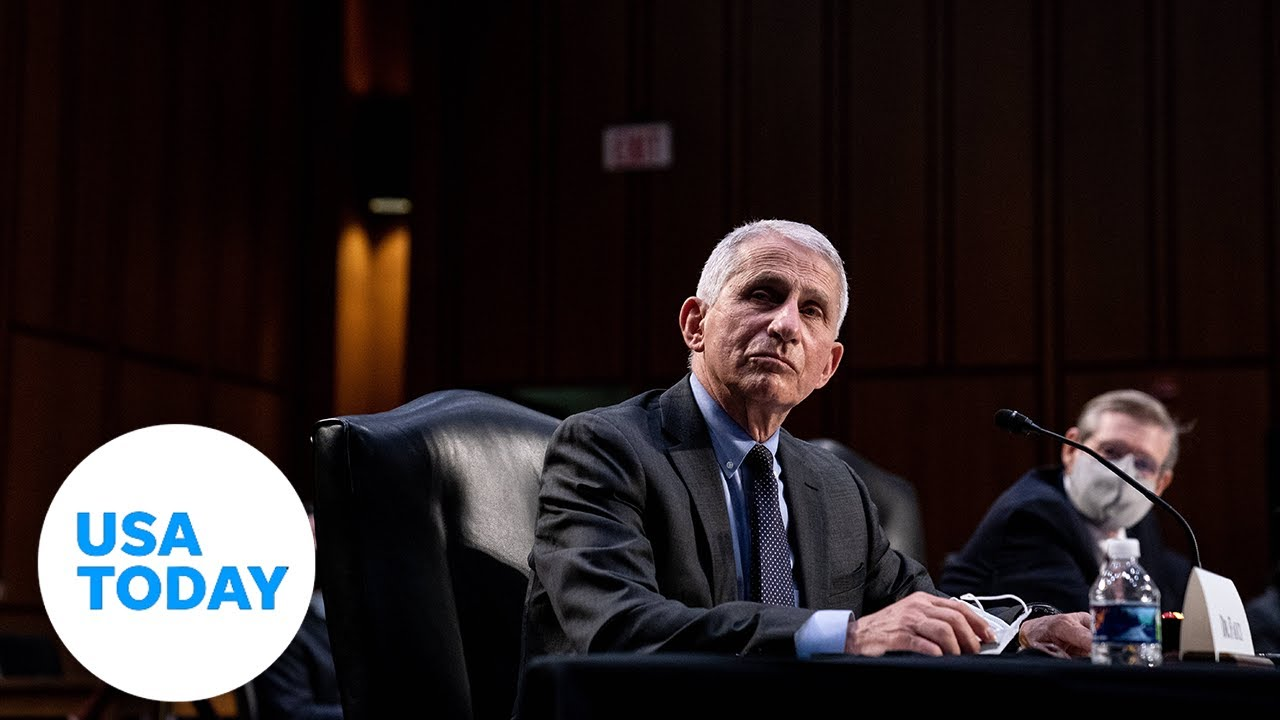 Senate Committee hearing on COVID-19 with Dr. Fauci (LIVE) | USA TODAY 3