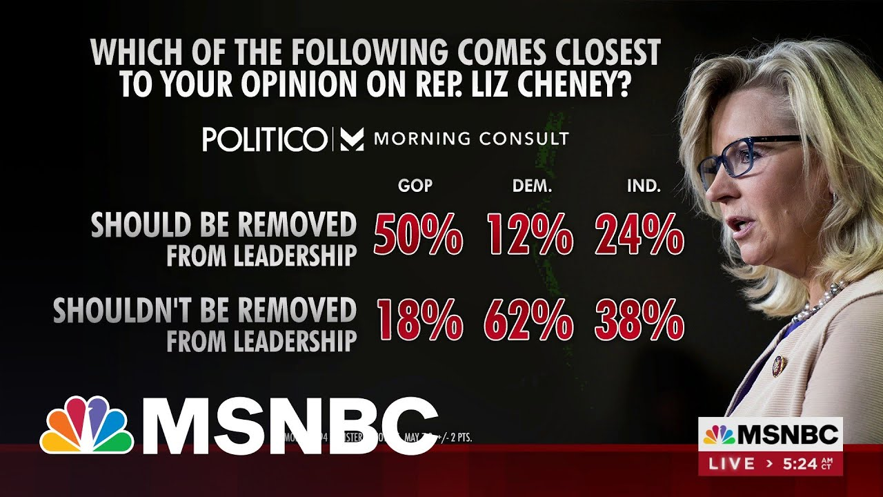 Half Of GOP Voters Support Removing Rep. Cheney From Leadership Role 8