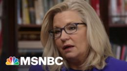 Cheney To Trump Political Team: 'Bring It On' | MSNBC 7