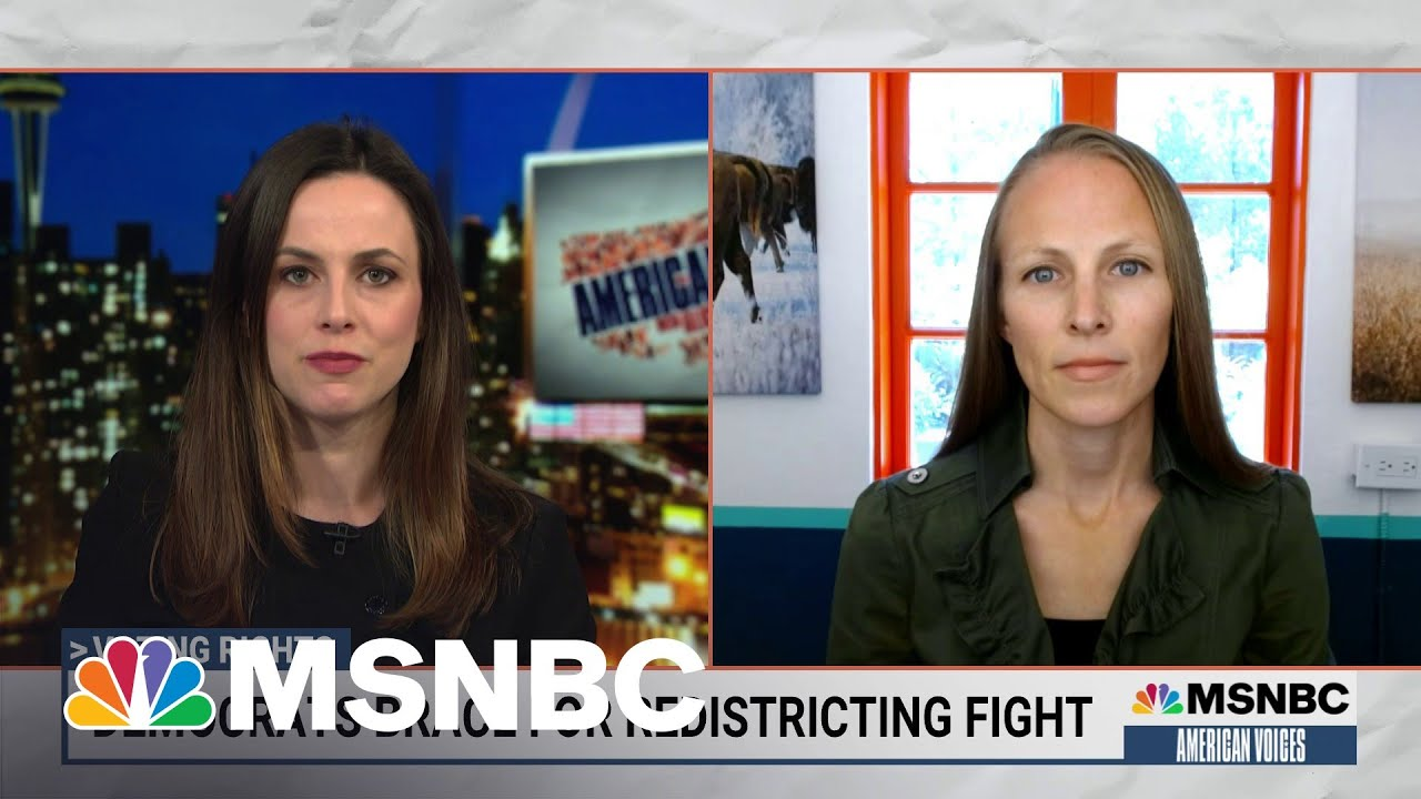 Fighting Gerrymandering: The Next Big Battle Over Voting Rights | American Voices | MSNBC 4