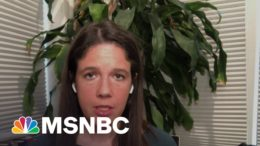 Ashley Parker: The Fringe Of The Republican Party Has Become 'Its Beating Heart' | MSNBC 7