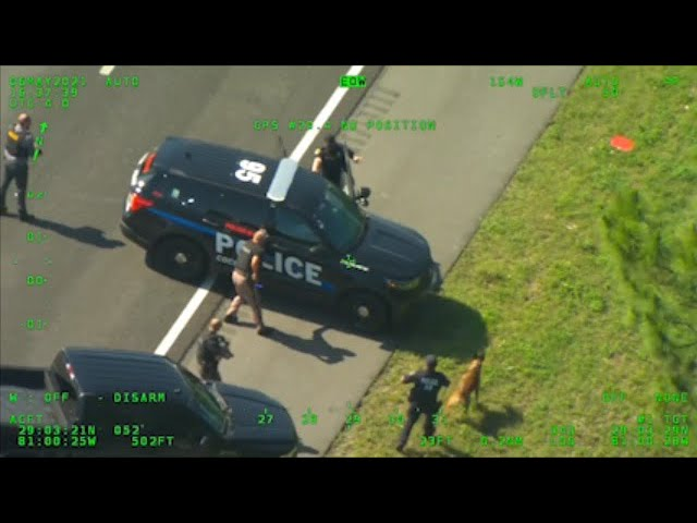Man steals police car, crashes, takes off in another in Fla. 1