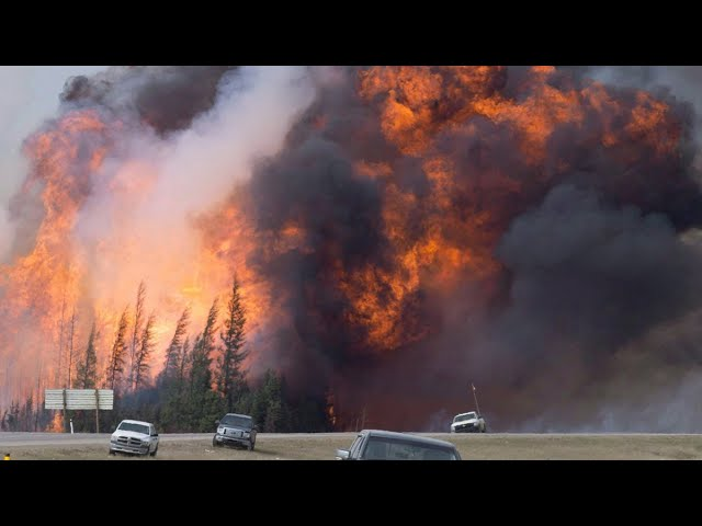 'A very surreal experience': Fort McMurray marks 5 years since historic wildfires 1
