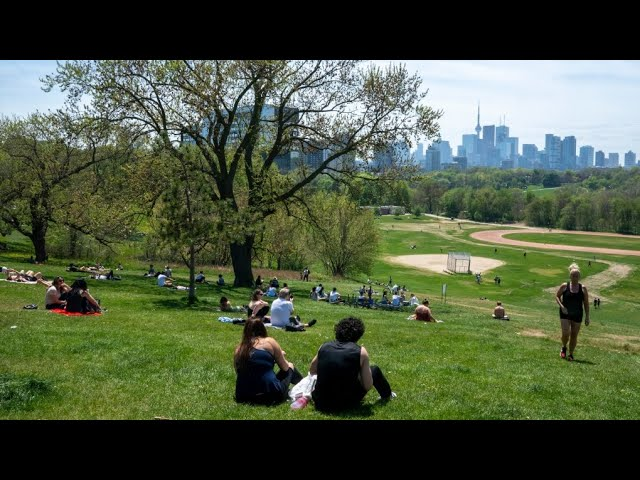 Green spaces in cities save lives and dollars: study 1