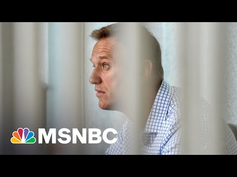 'What Are You So Afraid Of?': Reporter Confronts Putin Over Alexei Navalny 1