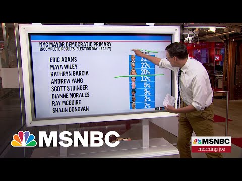 Steve Kornacki Breaks Down Numbers In NYC primary | MSNBC 1