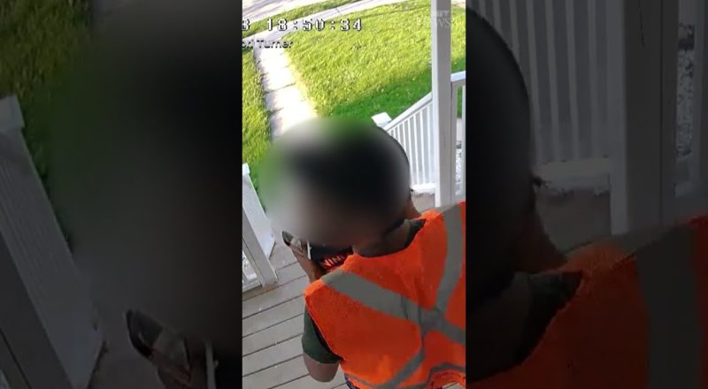 This delivery driver turned out to be a porch pirate! #shorts 1