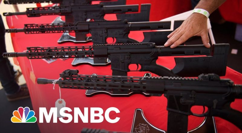 Background Checks Stopped A Record 300,000 Gun Sales Last Year 2