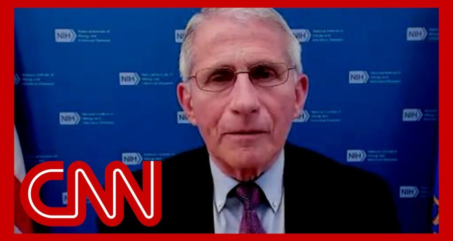 CNN's Berman reads Fauci's emails. Watch his response 1