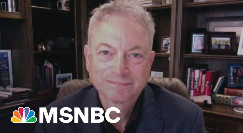 Gary Sinise: Our Veterans Deserve Our Support   MSNBC 1