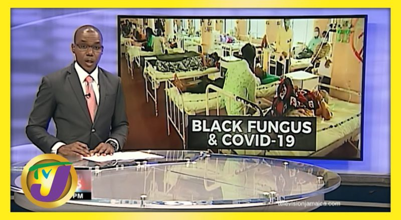 Deadly Black Fungus & Covid | TVJ News - June 2 2021 6