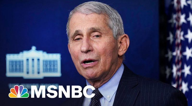 Conservatives Intensify Attacks On Dr. Fauci 7