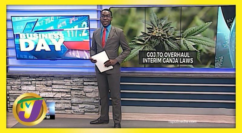 Jamaican Gov't to Overhaul Interim Ganja Laws | TVJ Business Day - June 4 2021 1