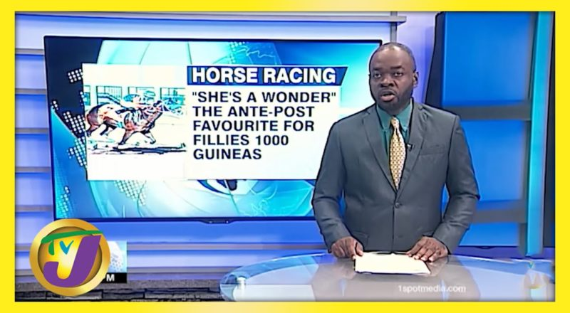 She's a Wonder Favourite for Fillies 1000 Guineas - June 4 2021 1