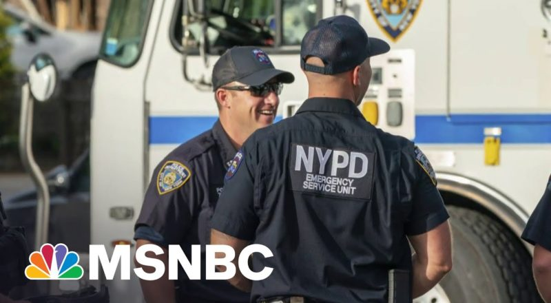 Bill Bratton On Cutting Crime, Restoring Order And His New Book | MSNBC 4