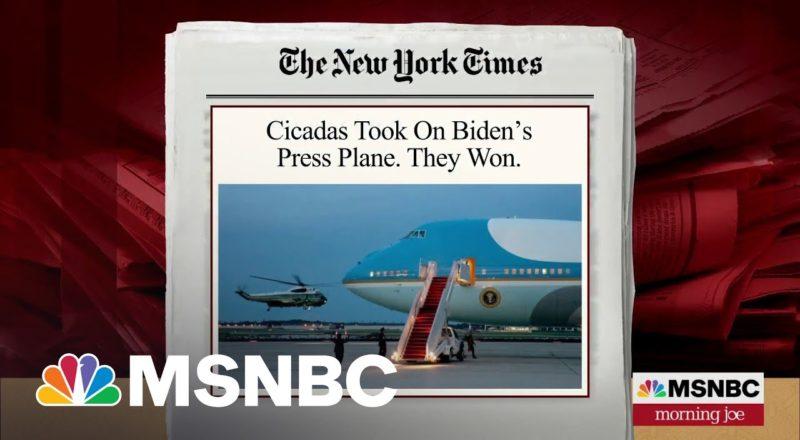 Cicadas Ground White House Press Corps Plane   MSNBC 9