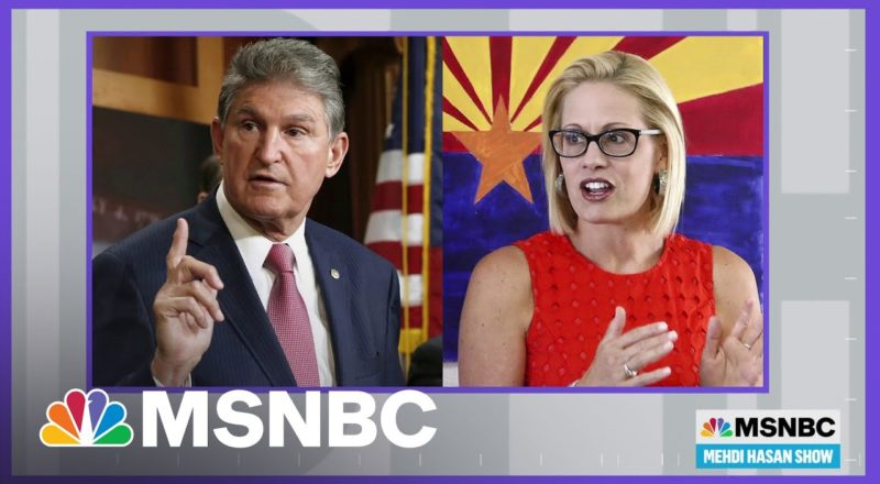 Mehdi Hasan Asks If Democrats Are Up To Protect Voting Rights | MSNBC 1