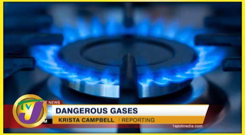 Cutting Greenhouse Gas Emissions in Jamaica | TVJ News 1