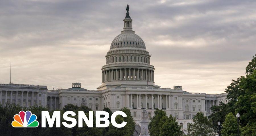 The Problem With Democrats According To A Democrat   MSNBC 1