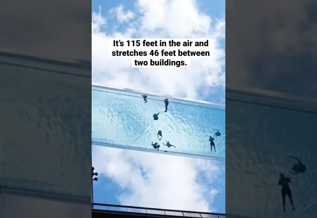 A pool with a glass bottom has opened in London | USA TODAY 1