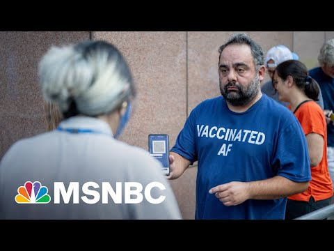 Dr. Jha: If You're Vaccinated, You Should Not Be 'Excessively Worried' 1