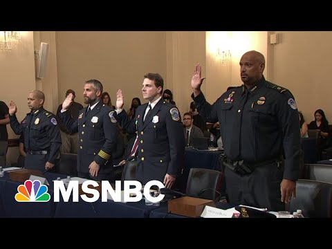 'Hitman' Trump: DC Officer Suggests Trump Started MAGA Riot As Probe Kicks Off 1