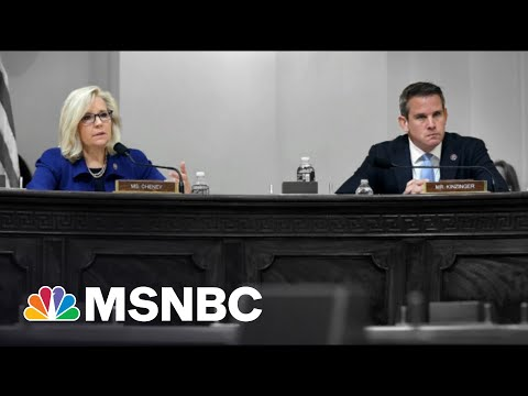 Trump Loyalists Want Liz Cheney And Adam Kinzinger Out Of GOP Caucus 1