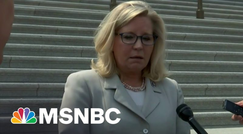 Rep. Cheney Criticizes McCarthy Over Pulling Committee Picks 3