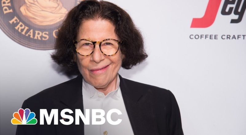 'Stomach-turning': MAGA Riot's Confederate Flag Rebuked byFran Lebowitz | MSNBC Summit Series 4