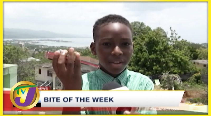Becoming a Billionaire | TVJ Bite of the Week - July 23 2021 1