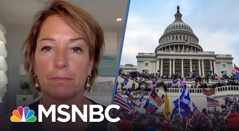 Carol Leonnig: Trump Gleefully' Watched Supporters Charge The Capitol 1