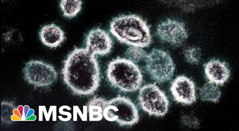 WaPo: CDC Document Warns Delta Variant Spreads Like Chickenpox 4