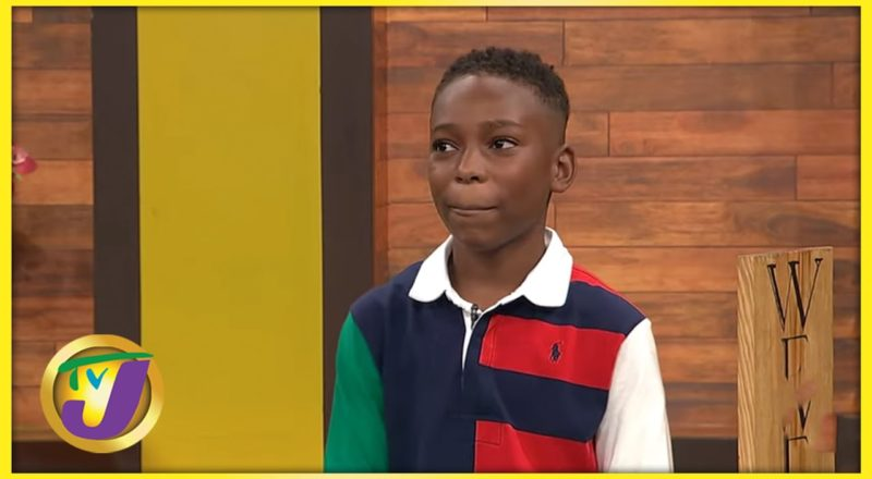 Kid Entrepreneur Jahmani Tomblin | TVJ Smile Jamaica 1