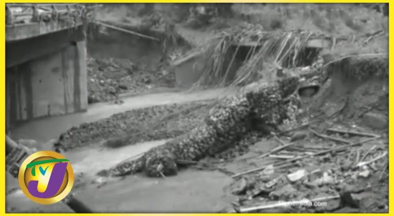Northern Clarendon Residents in Jamaica Urgently Need Bridge   TVJ News - July 2 2021 1