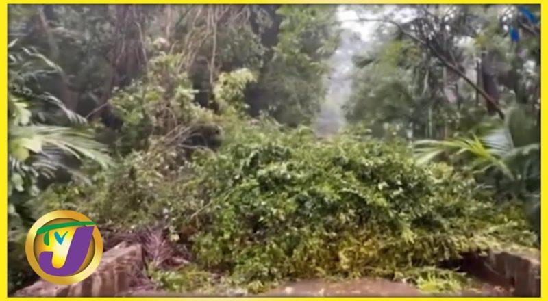 Tropical Storm Elsa Lashes Haiti & Dominica Republic   TVJ News - July 3 2021 7