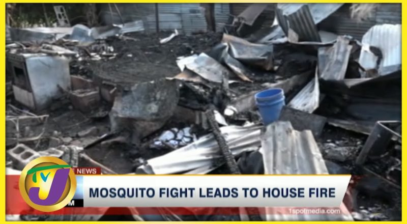 Jamaican Family Fight with Mosquitoes Leads to House Fire   TVJ News - July 8 2021 1