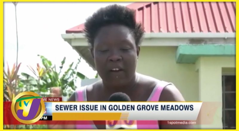 Sewer Issues Plague Residents of Golden Grove Meadows | TVJ News - July 10 2021 1