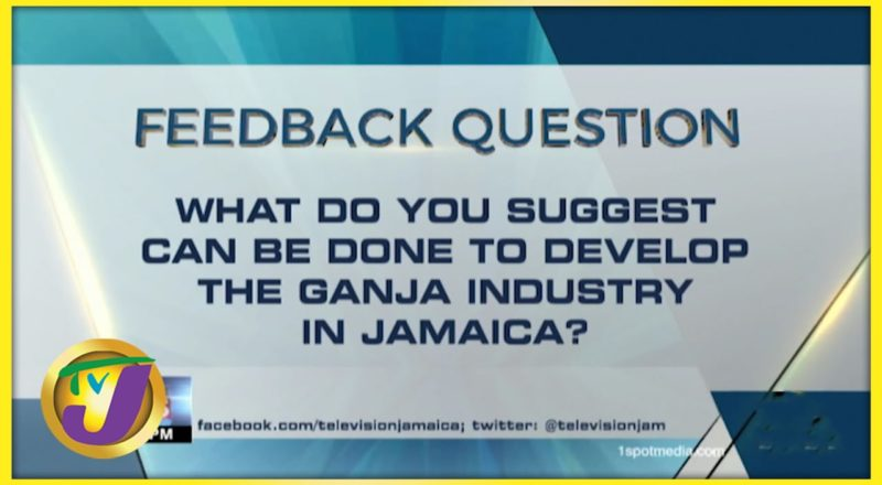 Feedback Question   TVJ News - July 12 2021 1