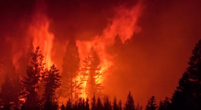 Wildfires in B.C. showing no signs of slowing down 4