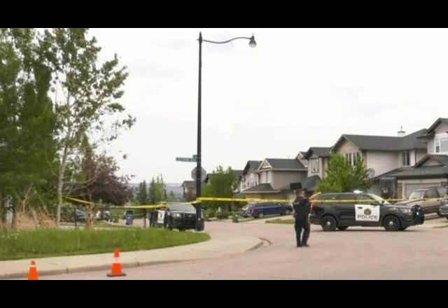 Man and dog shot dead in Calgary, suspect still at large 5