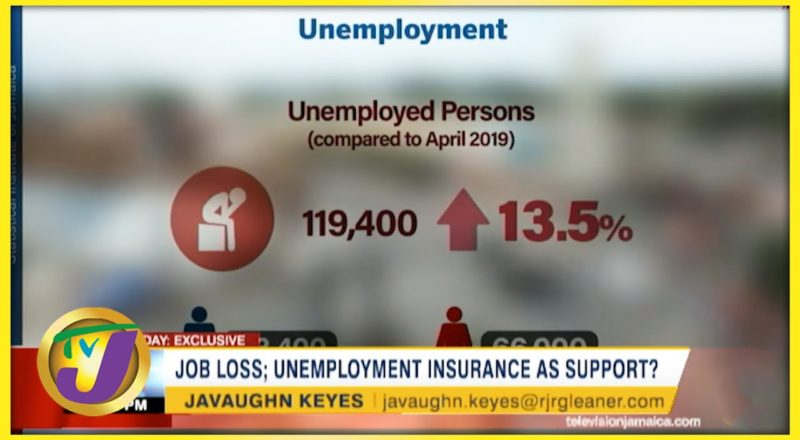 Job Loss; Unemployment Insurance as Support? | TVJ Business Day - August 19 2021 1