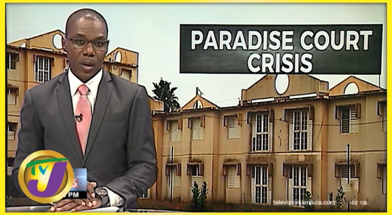 Paradise Court Crisis - Trench Town Jamaica | TVJ News - August 27 2021 1