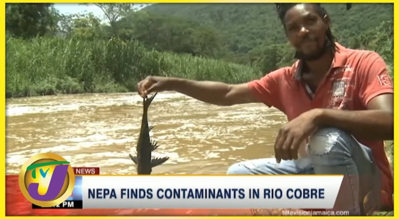NEPA Finds Contaminants in Rio Cobre   TVJ News - August 3 2021 1
