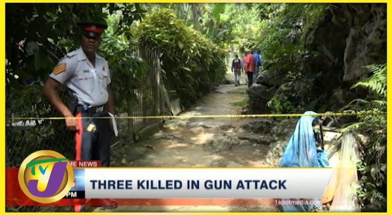 3 Killed in Gun Attack | TVJ News - August 4 2021 1