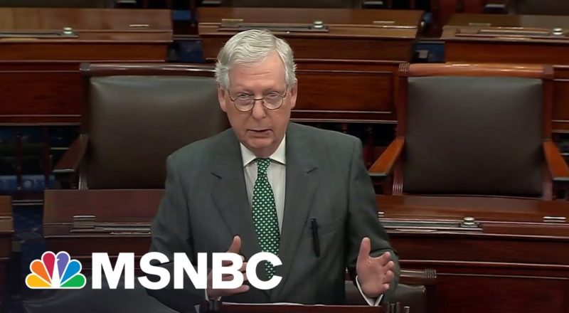 'It's A Dog Whistle': McConnell Slammed For Fake Socialism Attacks 1