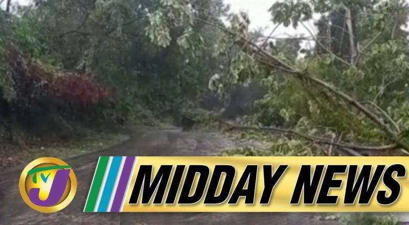 Tropical Storm Grace Batter Sections of Jamaica | TVJ Midday News - August 17 2021 1